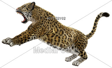 3D Digital Render Of A Big Cat Jaguar Hunting Isolated On White Background Stock Photo