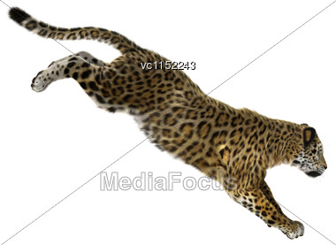 3D Digital Render Of A Big Cat Jaguar Jumping Isolated On White Background Stock Photo
