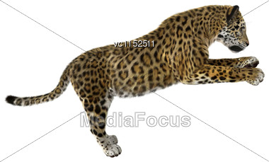 3D Digital Render Of A Big Cat Jaguar Iisolated On White Background Stock Photo