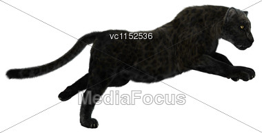 3D Digital Render Of A Big Cat Jaguar Hunting Iisolated On White Background Stock Photo