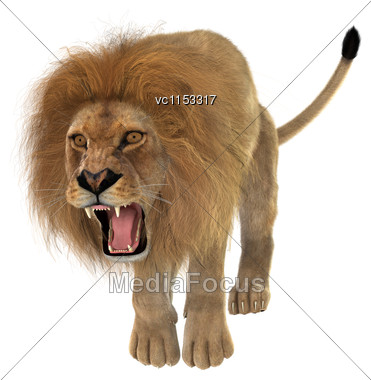 3D Digital Render Of A Big Cat Male Lion Isolated On White Background Stock Photo