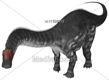 3D Digital Render Of A Dinosaur Apatosaurus Isolated On White Background Stock Photo