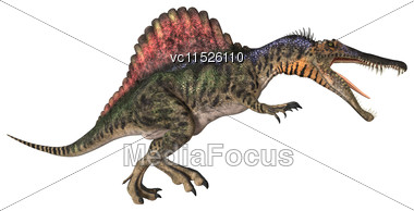 3D Digital Render Of A Dinosaur Spinosaurus Isolated On White Background Stock Photo