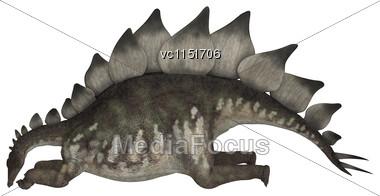 3D Digital Render Of A Dinosaur Stegosaurus Resting Isolated On White Background Stock Photo