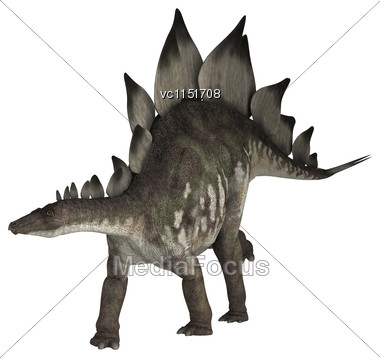 3D Digital Render Of A Dinosaur Stegosaurus Isolated On White Background Stock Photo