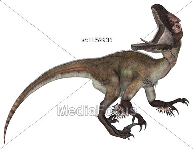 3D Digital Render Of A Dinosaur Utahraptor Isolated On White Background Stock Photo