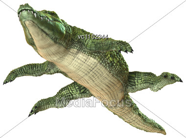 3D Digital Render Of A Green Crocodile Floating Isolated On White Background Stock Photo
