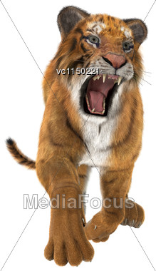 3D Digital Render Of A Hunting Big Cat Tiger Isolated On White Background Stock Photo