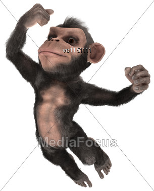 3D Digital Render Of A Jumping Little Chimpanzee Isolated On White Background Stock Photo