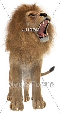 3D Digital Render Of A Male Lion Roaring Isolated On White Background Stock Photo