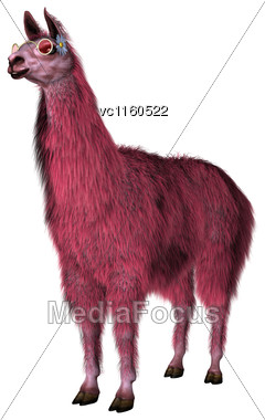 3D Digital Render Of A Pink Lama Isolated On White Background Stock Photo