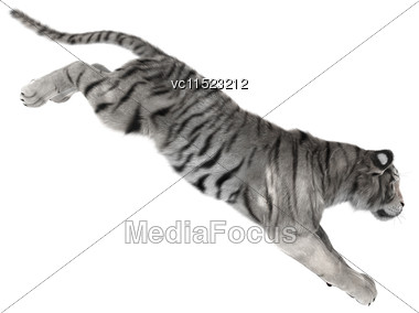 3D Digital Render Of A White Tiger Jumping Isolated On White Background Stock Photo