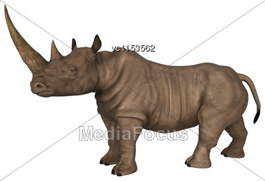 3D Digital Render Of A Wild Rhinoceros Isolated On White Background Stock Photo