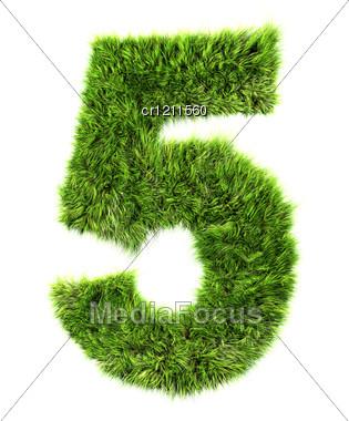 3d Grass Digit - 5 Stock Photo