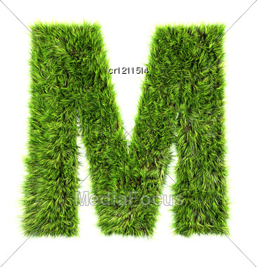 3d Grass Letter - M Stock Photo