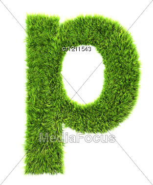 3d Grass Letter - P Stock Photo