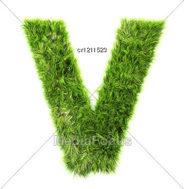 3d Grass Letter - V Stock Photo