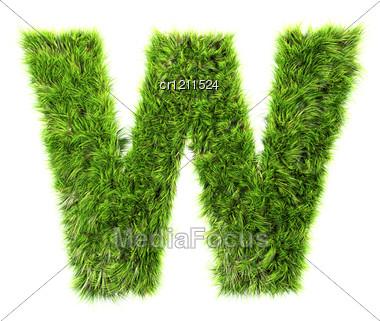 3d Grass Letter - W Stock Photo