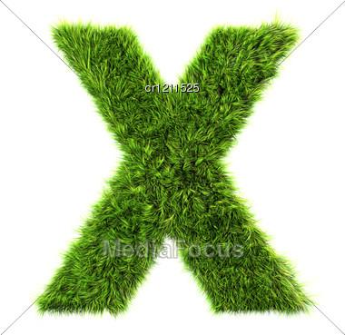 3d Grass Letter - X Stock Photo