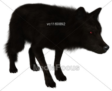 3D Illustration Of A Black Wolf Isolated On White Background Stock Photo