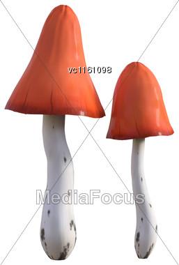 3D Illustration Of Mushrooms Isolated On White Background Stock Photo