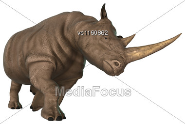 3D Illustration Of A Rhinoceros Isolated On White Background Stock Photo