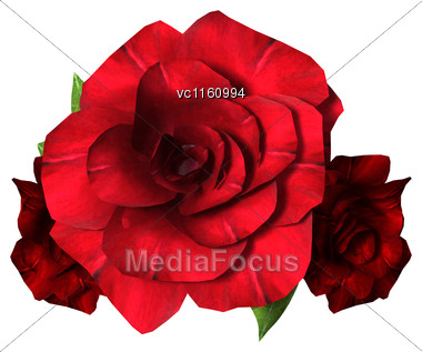 3D Illustration Of Three Red Roses Isolated On White Background Stock Photo