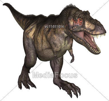 3D Illustration Of A Tyrannosaurus Isolated On White Background Stock Photo