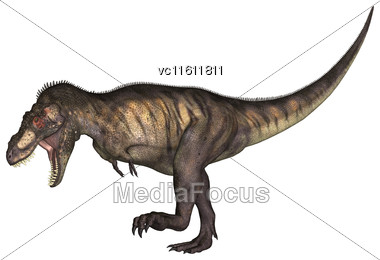 3D Illustration Of A Tyrannosaurus Isolated On White Background Stock Photo
