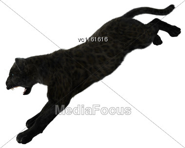 3D Rendering Of A Big Cat Black Panther Isolated On White Background Stock Photo
