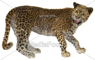 3D Rendering Of A Big Cat Leopard Isolated On White Background Stock Photo