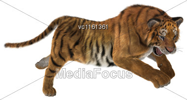 3D Rendering Of A Big Cat Tiger Jumping Isolated On White Background Stock Photo