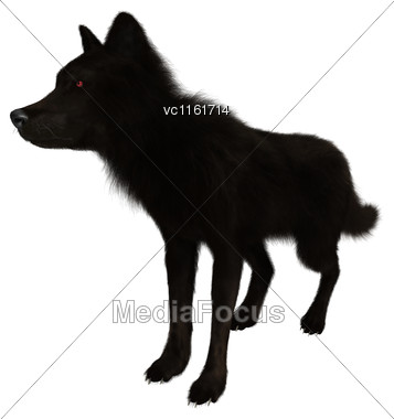 3D Rendering Of A Black Wolf Isolated On White Background Stock Photo