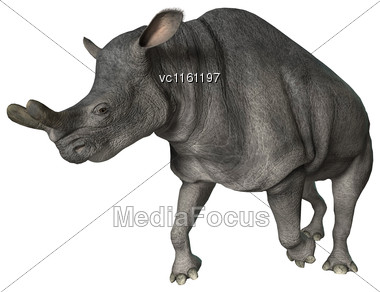 3D Rendering Of A Brontotherium Running Isolated On White Background Stock Photo