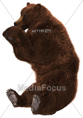 3D Rendering Of A Brown Ursus Bear Sitting Isolated On White Background Stock Photo