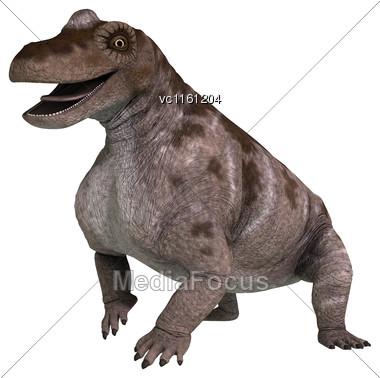 3D Rendering Of A Dinosaur Keratocephalus Isolated On White Background Stock Photo