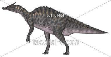 3D Rendering Of A Dinosaur Saurolophus Isolated On White Background Stock Photo