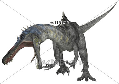 3D Rendering Of A Dinosaur Suchomimus Isolated On White Background Stock Photo