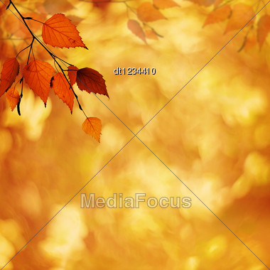 Abstract Autumnal Backgrounds With Petzval Lens Bokeh Stock Photo