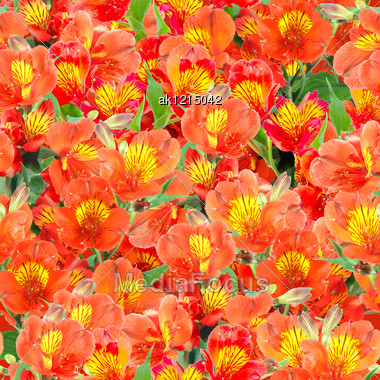 Abstract Background Of Orange Lily Flowers And Green Leafs. Seamless Pattern For Your Design. Close-up. Studio Photography. Stock Photo