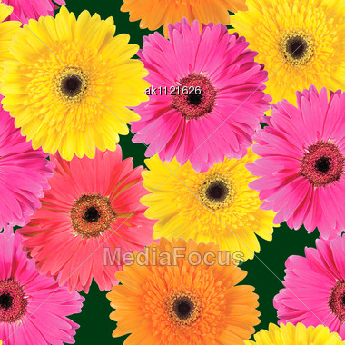 Abstract Background Of Pink, Yellow And Orange Flowers. Seamless Pattern. Close-up. Studio Photography Stock Photo