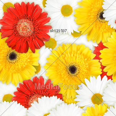 Abstract Background Of Red, Yellow And White Flowers. Seamless Pattern For Your Design. Close-up. Studio Photography. Stock Photo