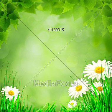 Abstract Environmental Backgrounds For Your Design Stock Photo