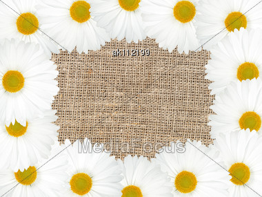 Abstract Frame With White Flowers And Textile Background. Close-up. Studio Photography Stock Photo