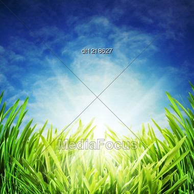 Abstract Natural Backgrounds Under The Blue Skies Stock Photo