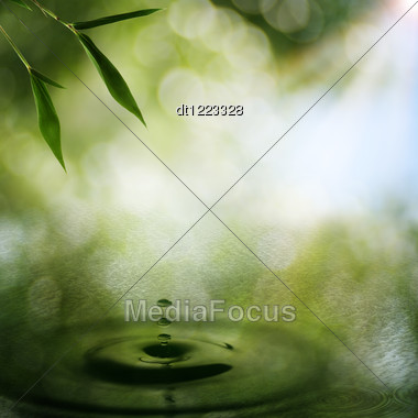 Abstract Oriental Backgrounds With Bamboo Foliage Stock Photo