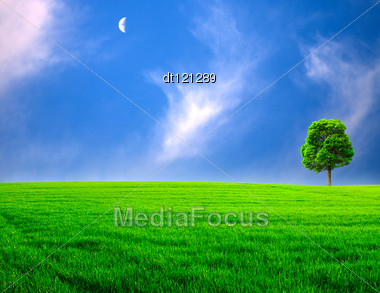 Abstract Rural Landscape. Green Meadow Under The Blue Skies Stock Photo