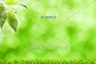 Abstract Spring Backgrounds With Defocused Bokeh And Sun Beams Stock Photo