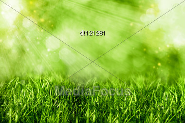 Abstract Summer Backgrounds With Green Grass And Bokeh Stock Photo