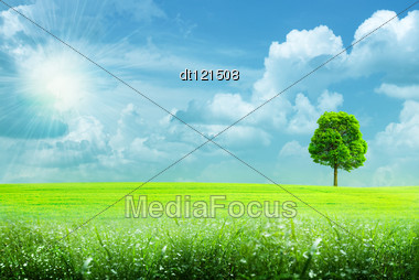 Abstract Summer Rural Landscape Under The Blue Skies And Bright Sun Stock Photo